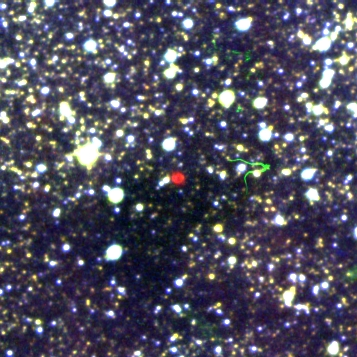 Color image of PN G002.3+01.7